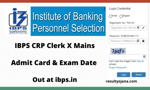 IBPS CRP Clerk X Mains Admit Card & Exam Date Out at ibps.in
